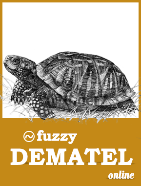 fuzzy dematel software