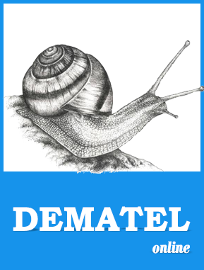 dematel software