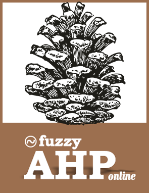 fuzzy ahp software