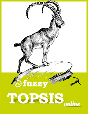 fuzzy topsis software