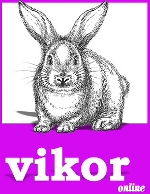 vikor software